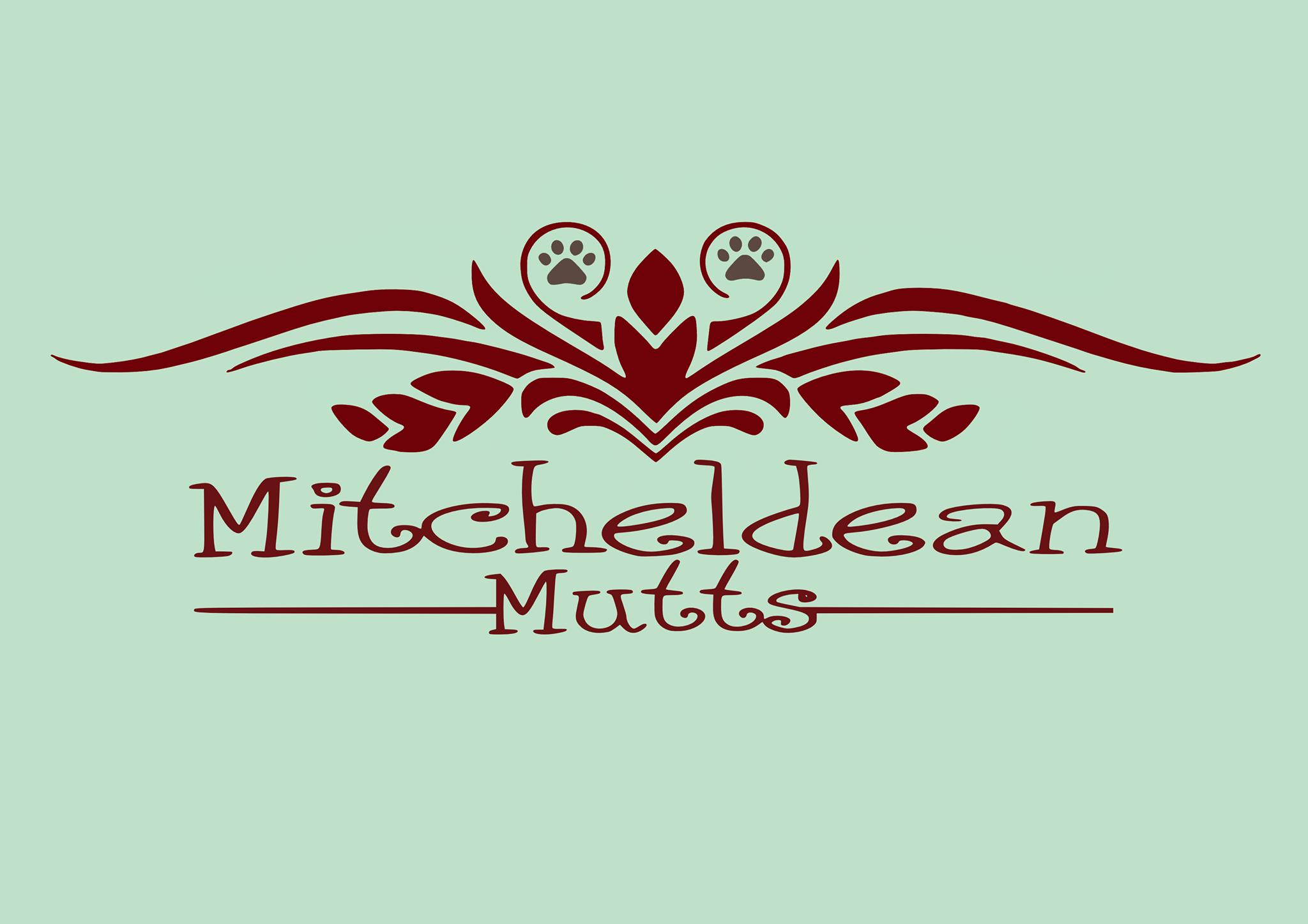 Mitcheldean Mutts